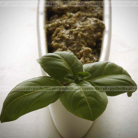 Pesto Barbary